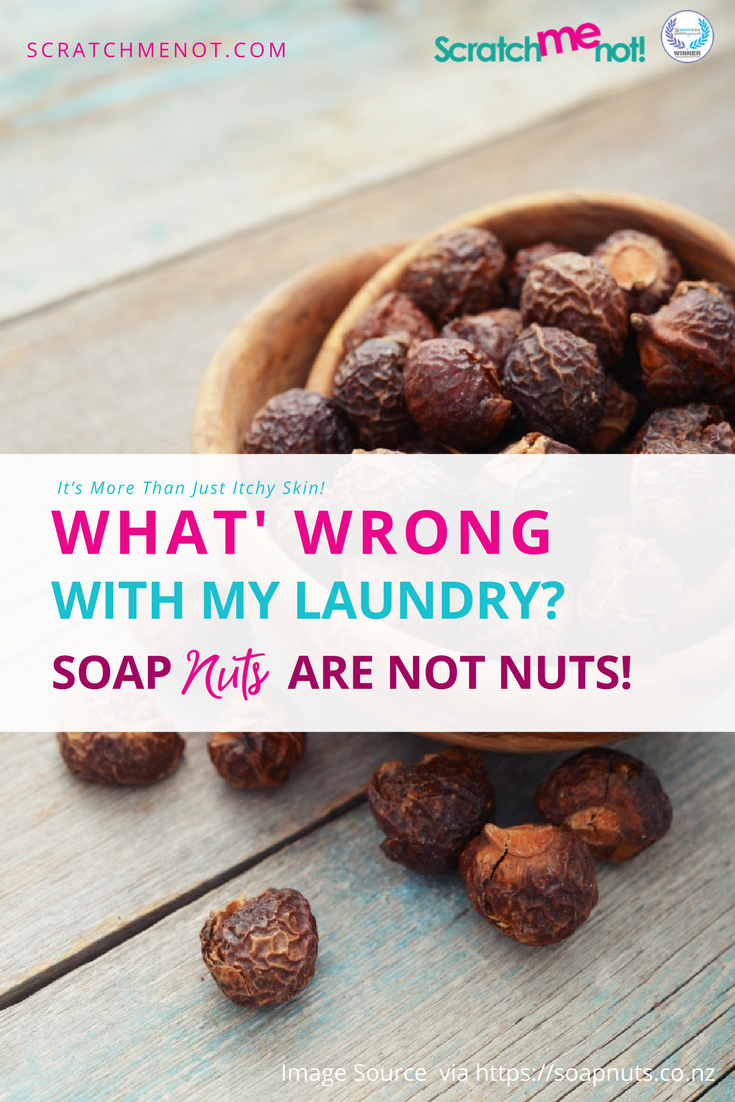 Laundry detergent alternative substitute soap nuts scratchmenot